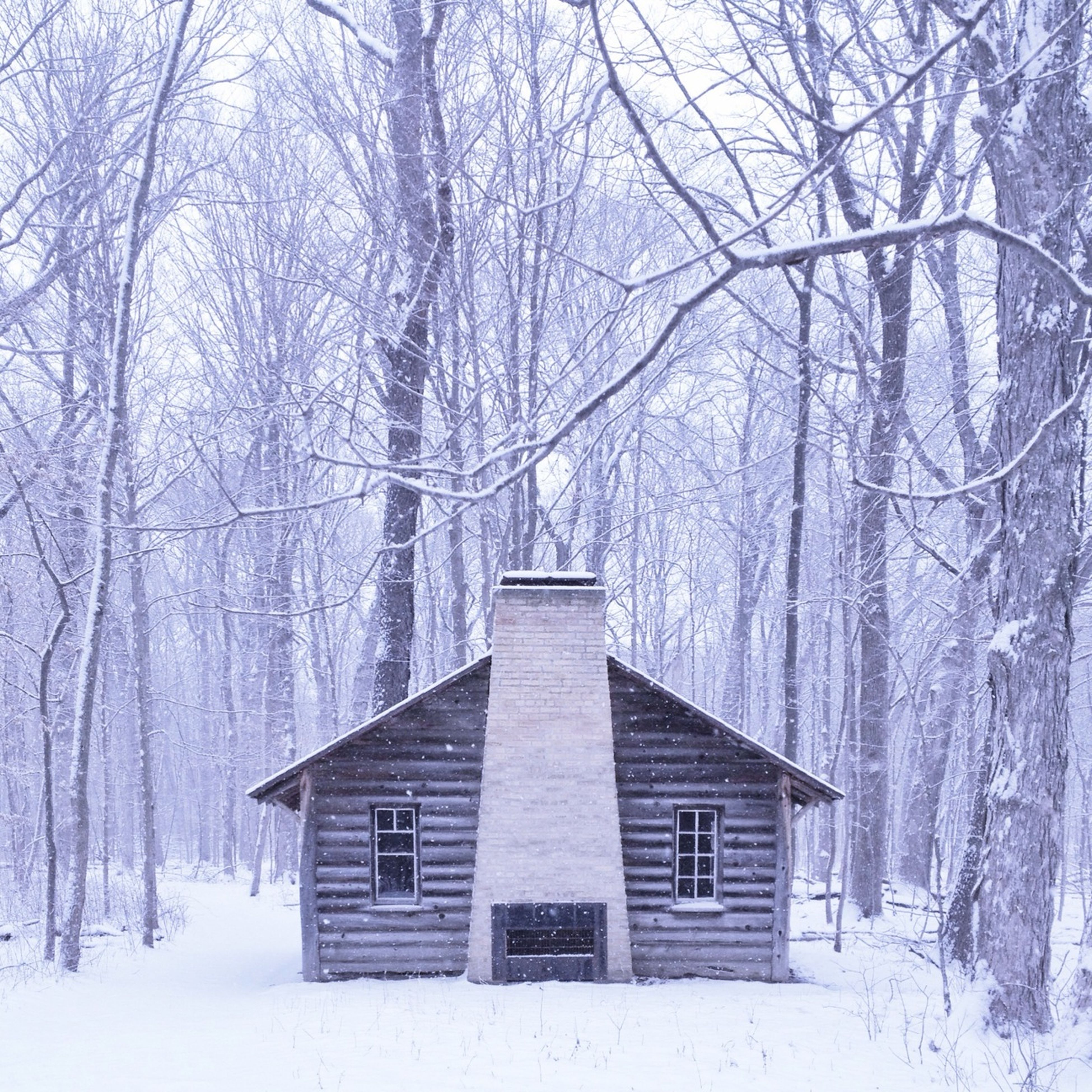 winter, snow, cold temperature, season, bare tree, weather, tree, covering, built structure, architecture, frozen, building exterior, nature, branch, covered, tranquility, tranquil scene, field, beauty in nature, landscape