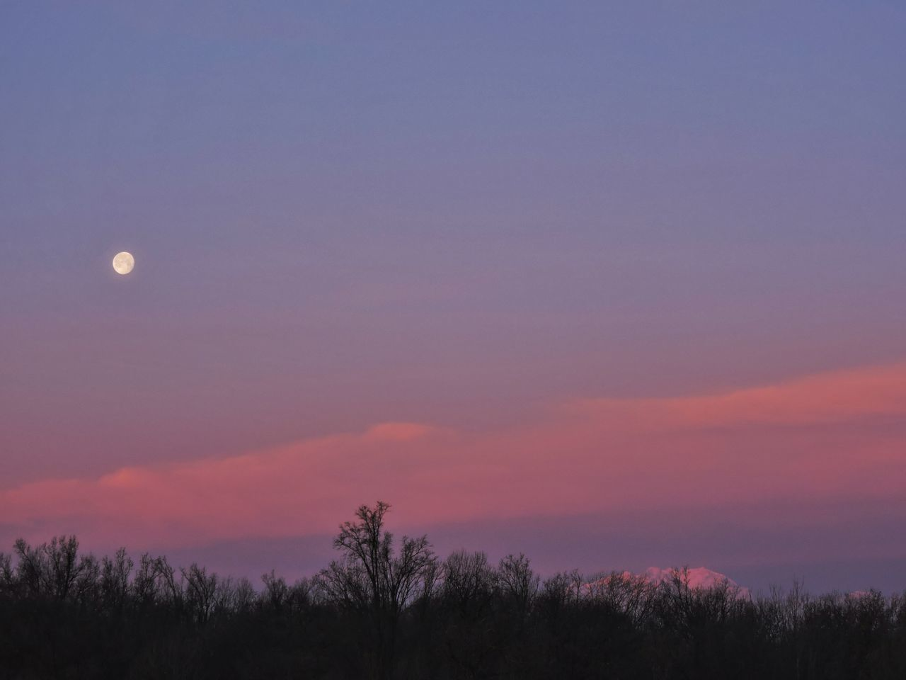moon, sunset, scenics, beauty in nature, nature, tranquil scene, sky, tranquility, outdoors, no people, silhouette, night, tree, landscape, half moon, crescent, astronomy