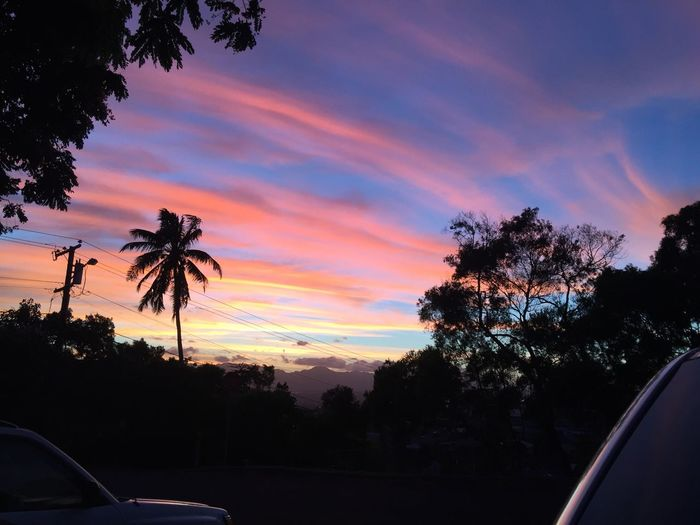 Cotton candy skys