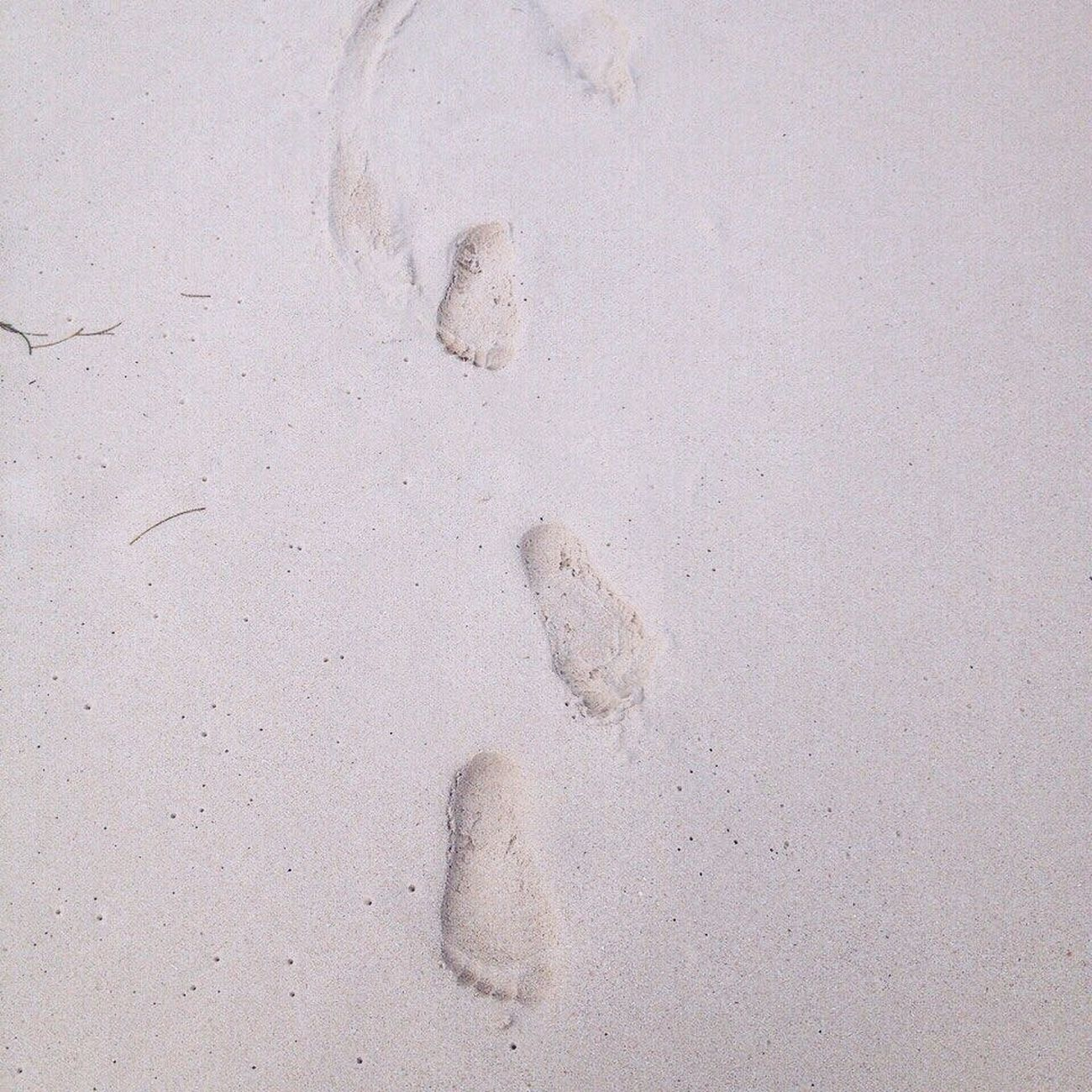 следы на песке...👣👣🐚✨🌊 Sand Beach Nature Track - Imprint No People Day Summer Ocean Dominican Republic White Sand Beauty In Nature Traces