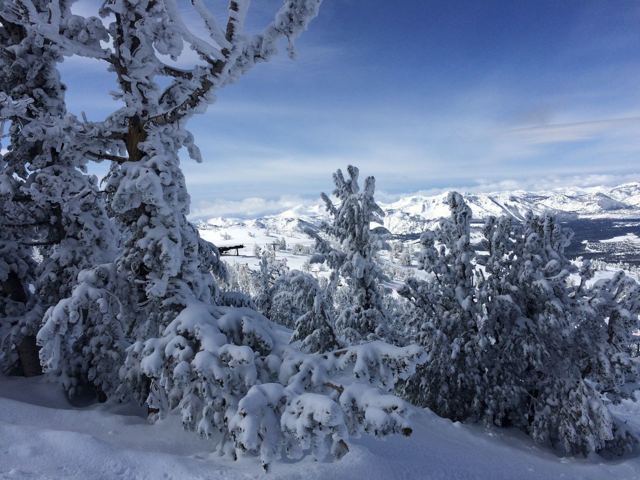 Winter wonderland at Lake Tahoe. 13 meters/ 40 feet of snow. Winter Cold Temperature Nature Weather Landscape Tranquil Scene Mountain IPhone 5 Photography Beauty In Nature Winter Heavenly Ski Resort