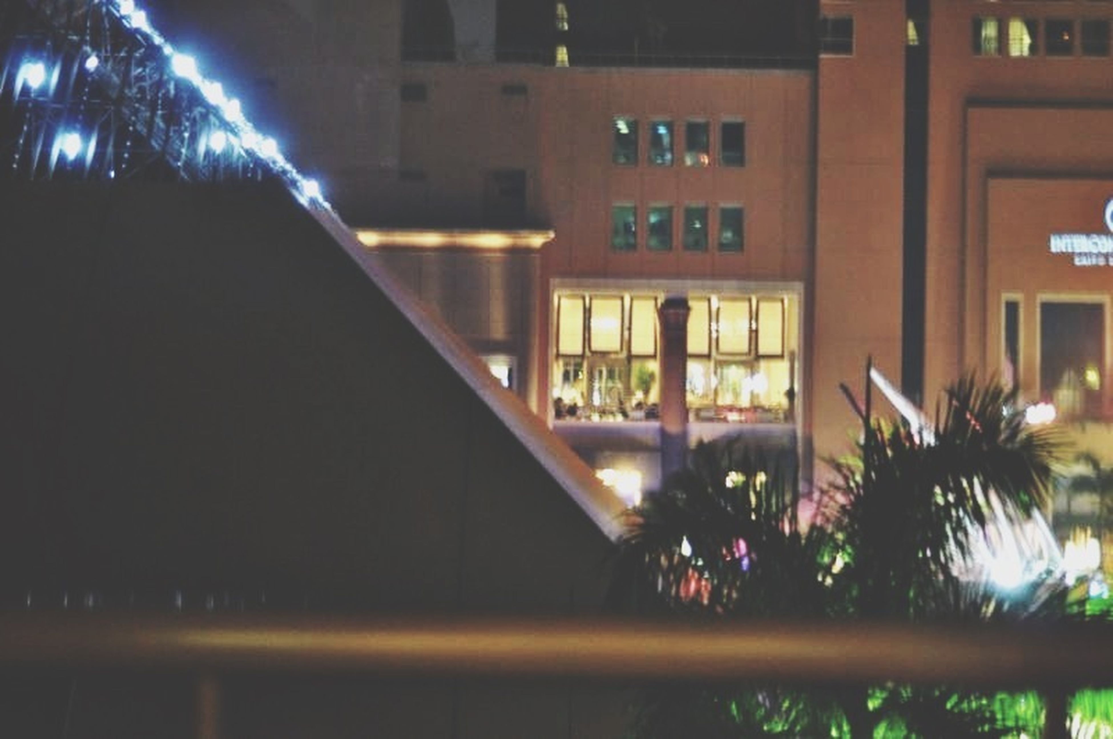 architecture, illuminated, built structure, building exterior, night, house, tree, residential building, residential structure, city, building, lighting equipment, reflection, no people, outdoors, balcony, window, growth, railing, potted plant