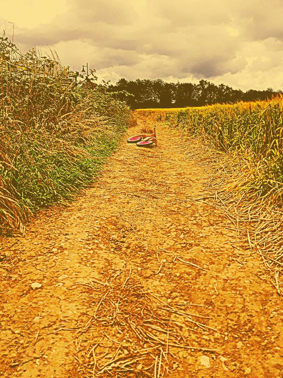 It's either use the bike or it's going to be a long walk! Taking Photos Hanging Out Bike Ride Spending Time With My Daughter Long Walk Nature Photography Fields Of Gold Escapism Day Out With Daughter Day Out For A Walk Escaping Androidography In A Dream Ashford Kent