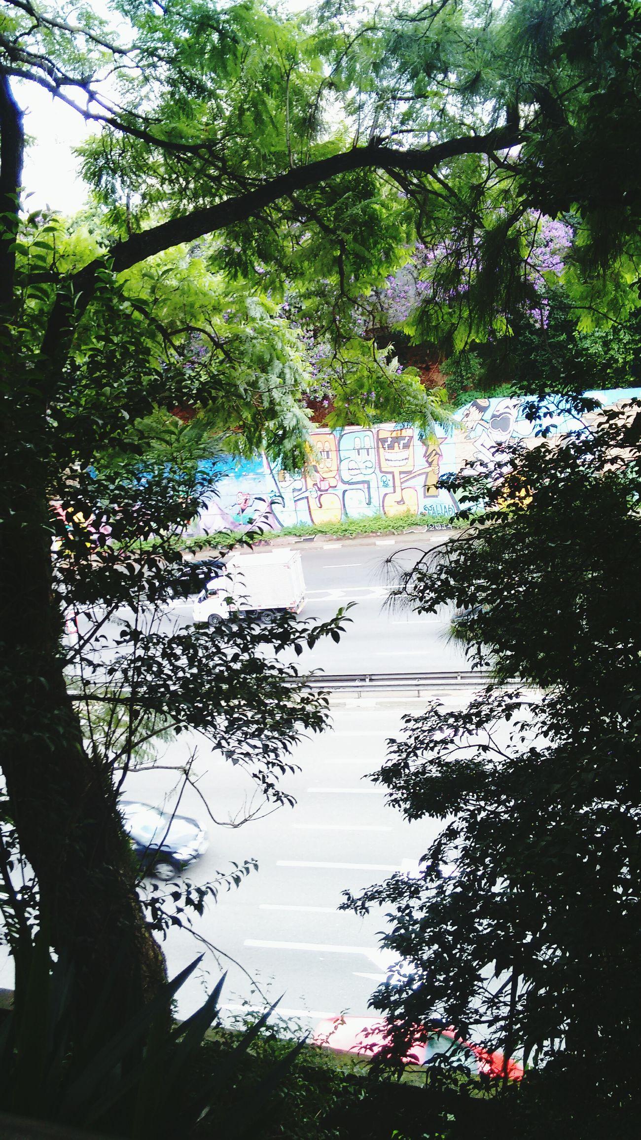 Graffiti Art Urbanphotography Eyemphotography Sao Paulo - Brazil