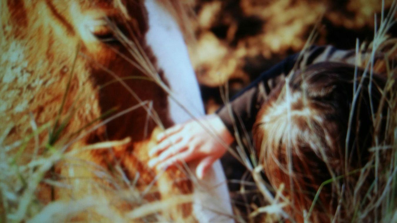 Taking Photos Cheval Beautiful Nature Photographie  Enfants Gardanne Photography Kids Enjoying Life