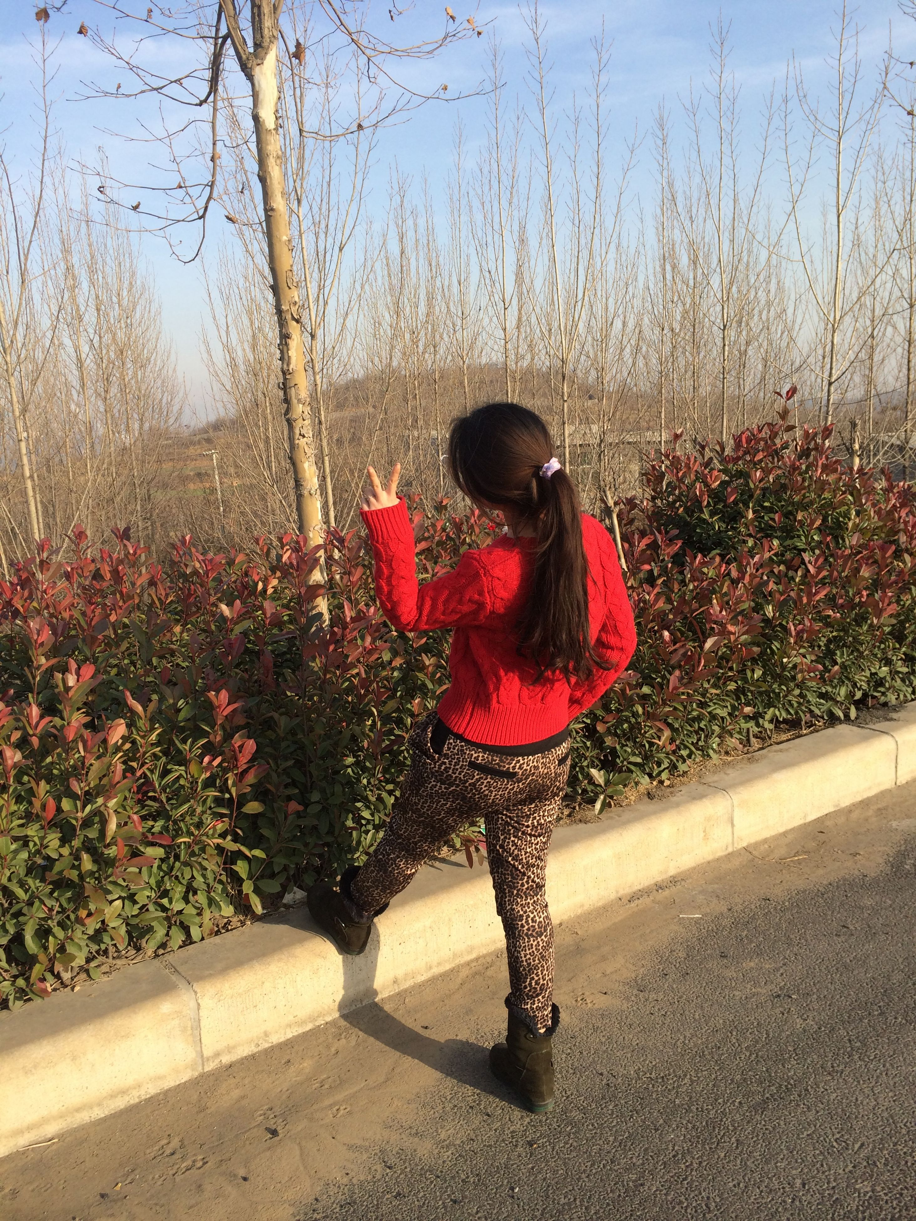 red, childhood, full length, standing, plant, grass, day, outdoors, high angle view, tree, sunlight, safety, elementary age, lifestyles, protection, shadow, park - man made space, street