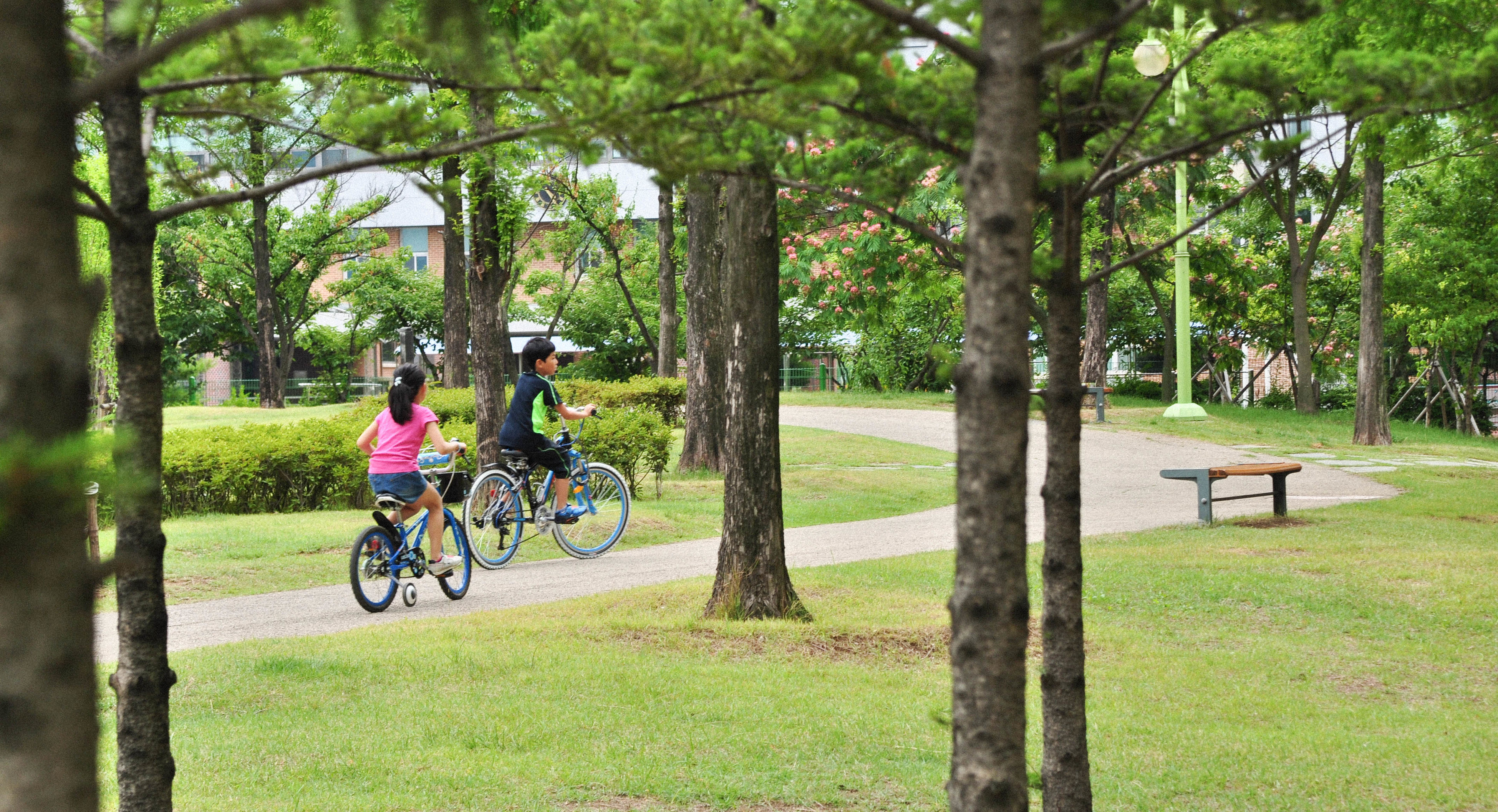 bicycle, tree, grass, lifestyles, land vehicle, transportation, riding, leisure activity, men, mode of transport, full length, green color, cycling, park - man made space, sunlight, sport, shadow