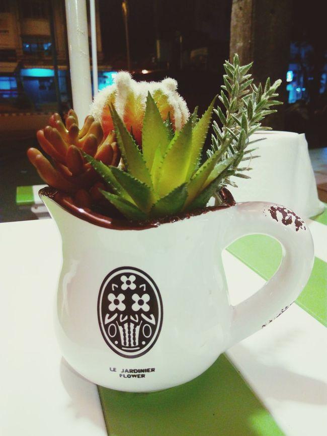 ดอกไม้ ดอกไม้ (Flower)