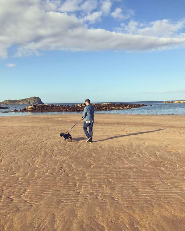 Walkies Boyfriend Dachshund Dog Northberwick Scotland