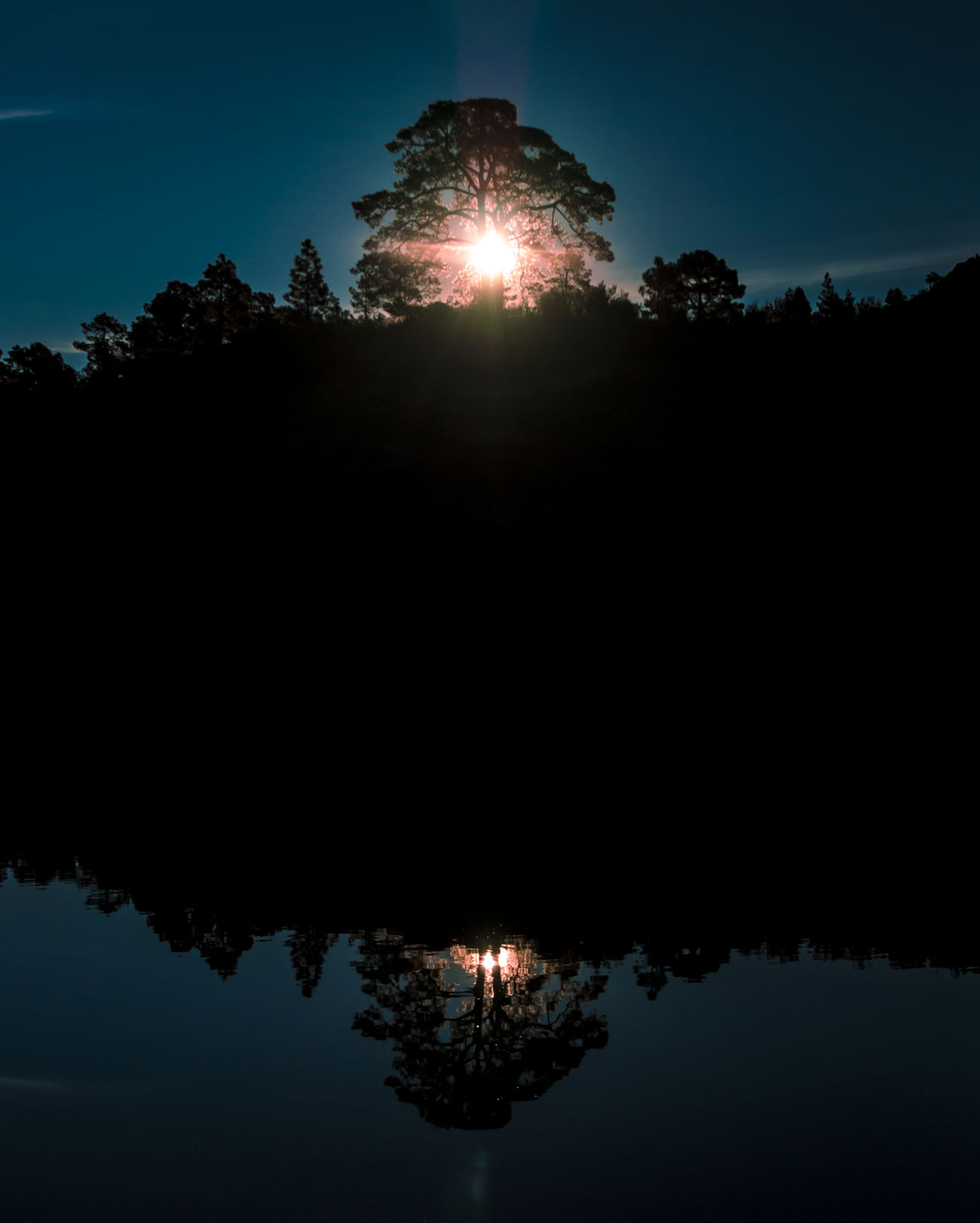 Sunrise through a tree mirrored in the water Beautiful Nature Beauty In Nature Dawn Dawn Of A New Day Double Eye4photography  EyeEm Best Shots EyeEm Nature Lover Landscape Landscape_Collection Landscape_photography Magic Moments Mirroring In Water Mystic No People Outdoor Photography Outdoors Outdoors Photograpghy  Reflection Sky Sunrise Travel Photography Tree Water