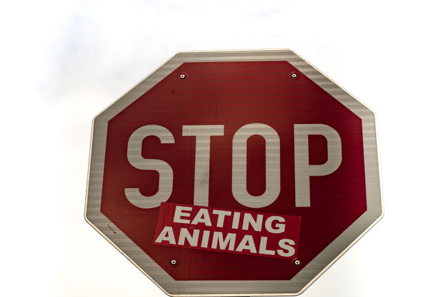 """Vienna is different.. even traffic signs are against """"stop eating Animals"""" Happy Earth Day my eyeem friends Close-up Happy Earth Day No People Road Sign Stop Stop Eating Animals Stop Sign Think Different Up Close Street Photography Vienna Earthday Earthday2016"""