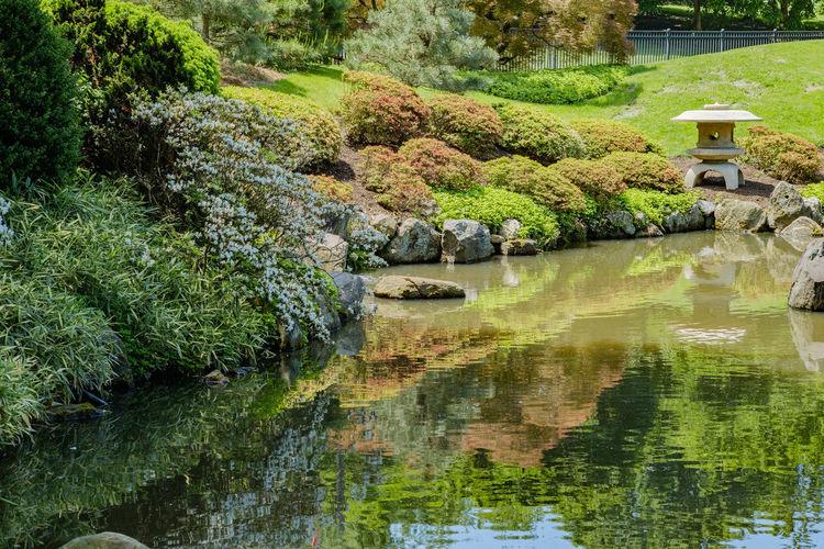 Calm Horizontal Images Japanese  Lantern Pond Shofuso Japanese Teahouse Tranquility Azalea Blooms Concrete Lante Fish Japanese Monuments Koi Pond Reflections Springtime Springtime Blossoms Tea House Tranquility Scene