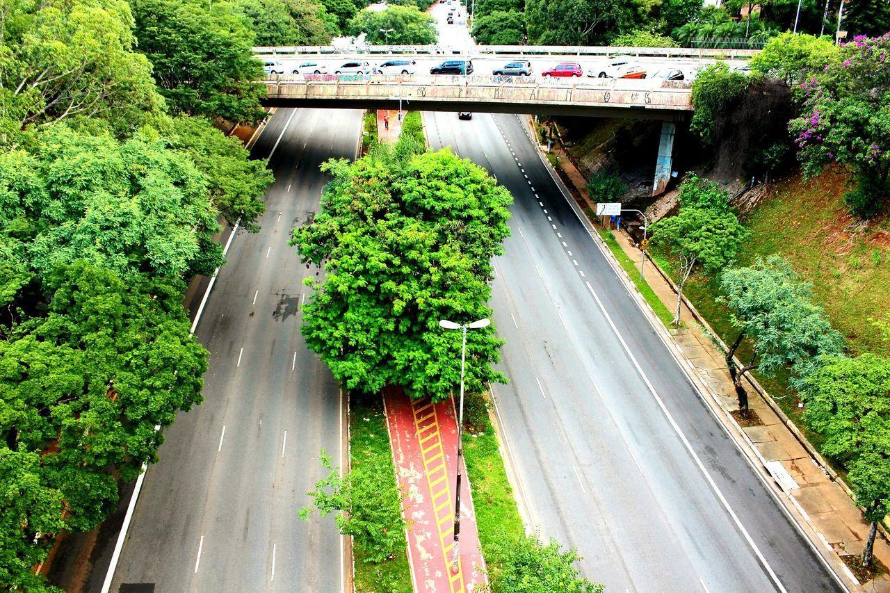 Nature Street Sumaré- São Paulo-Brazil💜 Saturday Saturday Afternoon