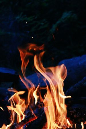 Campfire Camping Pshycodelic Hallucinations The Trickster