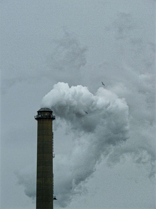 Smoke Machine Cloud Maker Industrial Industrial Photography Industrial Plant Birds In Flight Steam Smoke Stack