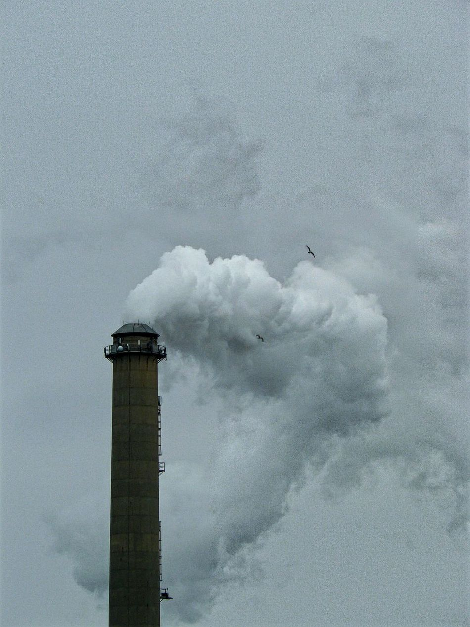 Smoke Machine Cloud Maker Industrial Industrial Photography Industrial Plant Birds In Flight Steam Smoke Stack