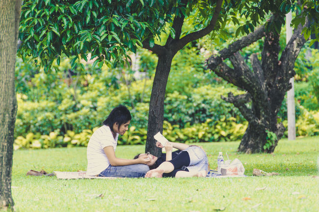 Bonding Book Branch Casual Clothing Couple - Relationship Day Full Length Grass Hobbies Lawn Leisure Activity Lifestyles Men Park Park - Man Made Space Person Reading Rear View Relaxation Relaxing Sitting Togetherness Tree Tree Trunk