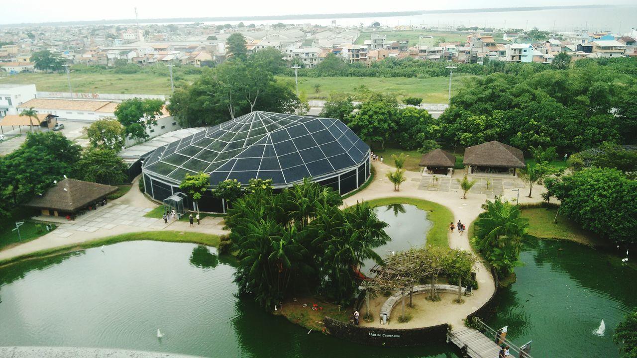 Parque Mangal das Garças, Belém do Pará. The Great Outdoors – 2016 EyeEm Awards Flying High