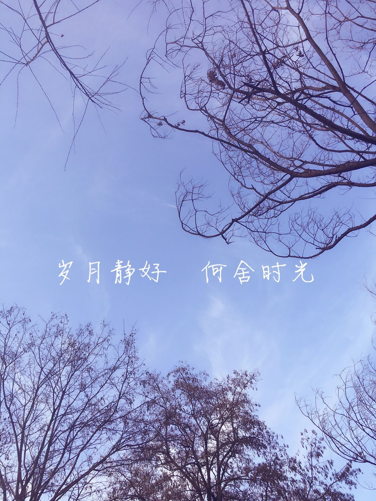 blue sky Blue Sky Blue Bluesky Sky Sky And Clouds Words Chinese Chinese Words 蓝天 天空