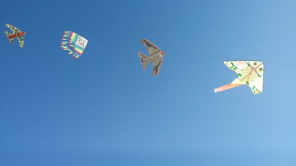 Beautiful stock photos of dragon, Blue, Childhood, Clear Sky, Flying