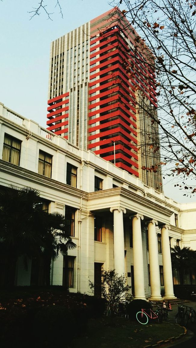 Typical Pillars in front of the Modern Architecture