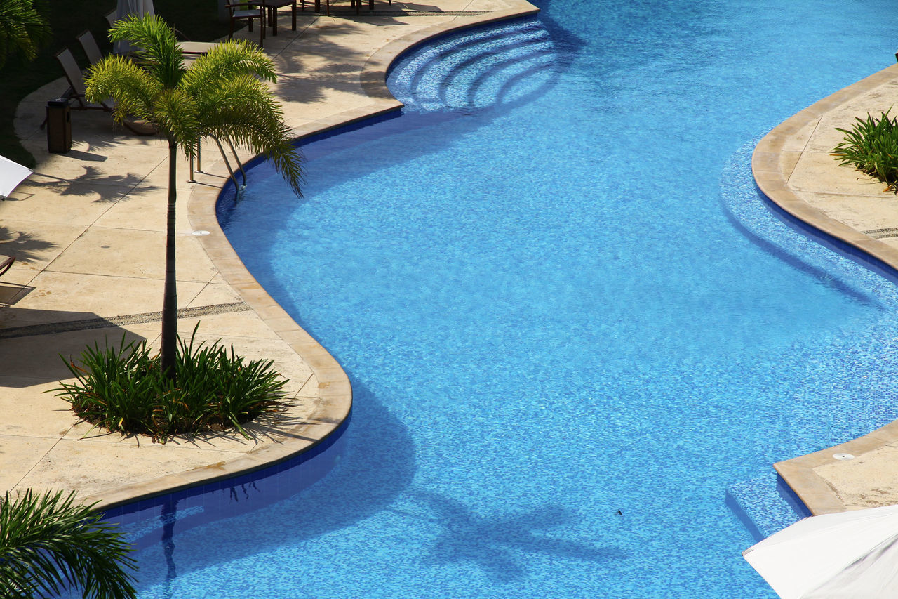 High Angle View Of Palm Tree By Swimming Pool On Sunny Day
