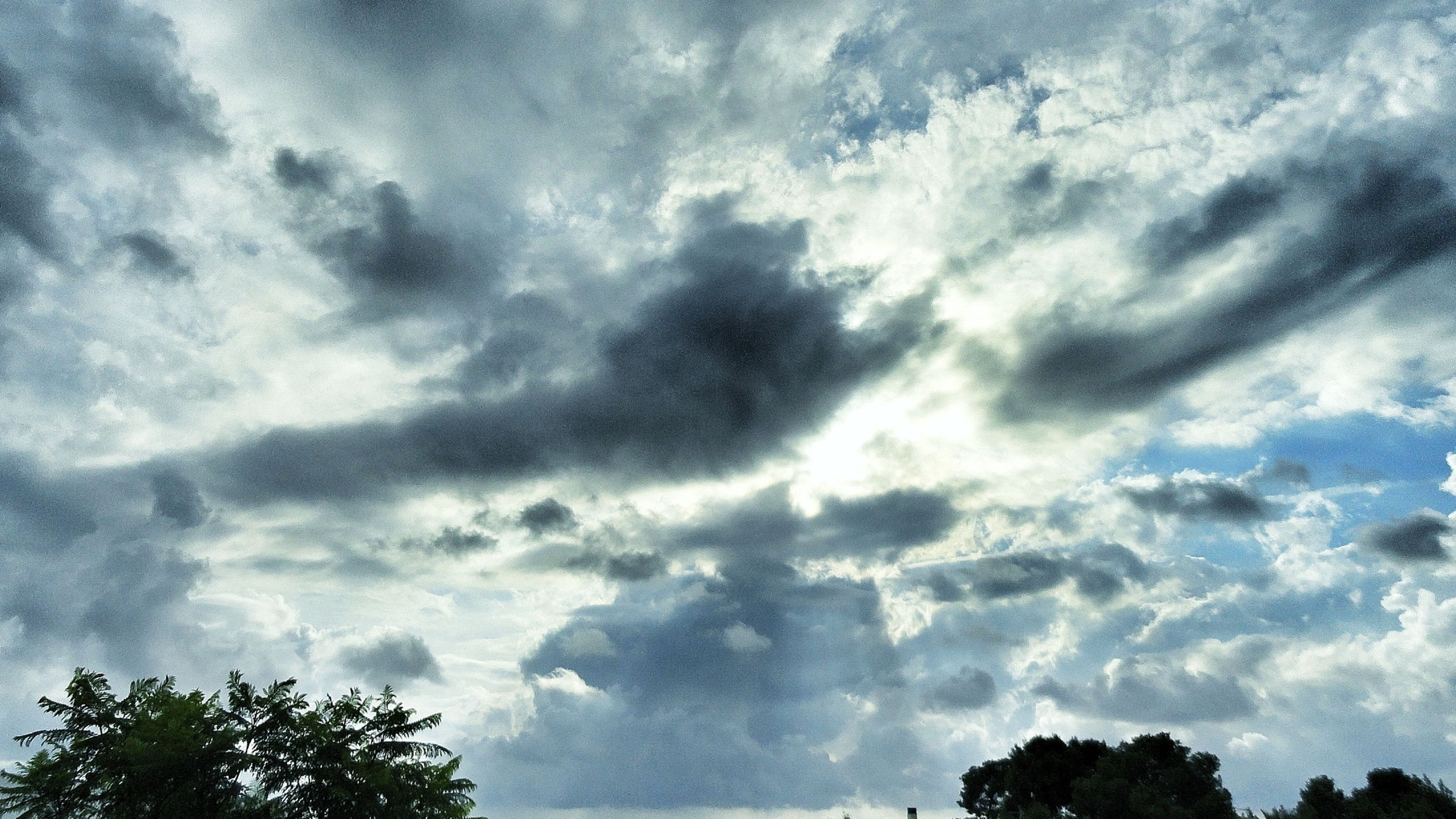 low angle view, sky, tree, cloud - sky, cloudy, tranquility, beauty in nature, nature, scenics, silhouette, tranquil scene, cloud, treetop, high section, growth, cloudscape, outdoors, idyllic, blue, no people