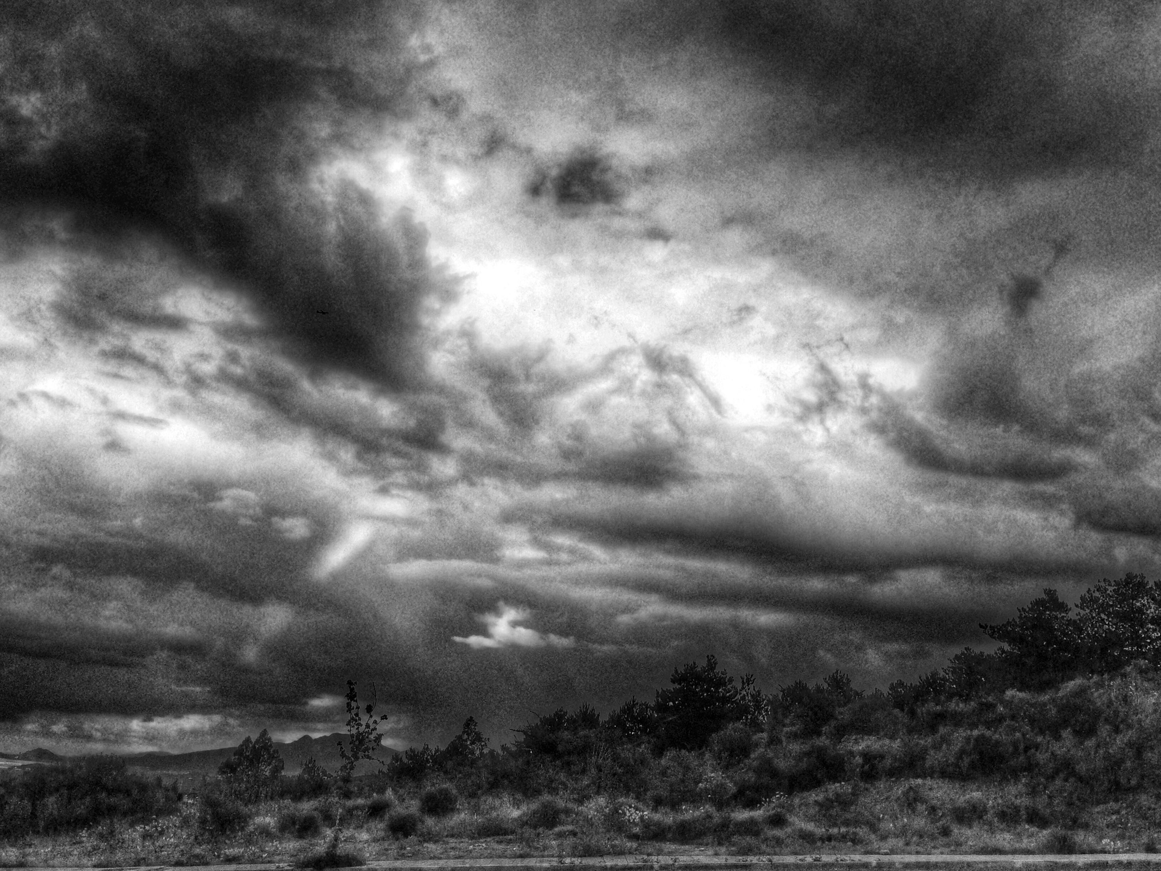 sky, cloud - sky, cloudy, tranquility, tranquil scene, landscape, scenics, tree, weather, beauty in nature, nature, overcast, field, storm cloud, cloud, low angle view, non-urban scene, growth, idyllic, outdoors