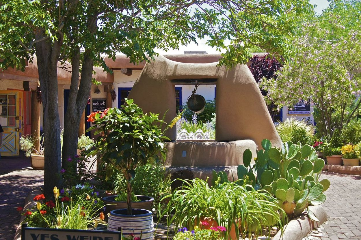 Make a Wish Architecture Built Structure Green Color New Mexico Old Town Albuquerque Plaza Potted Plant Well