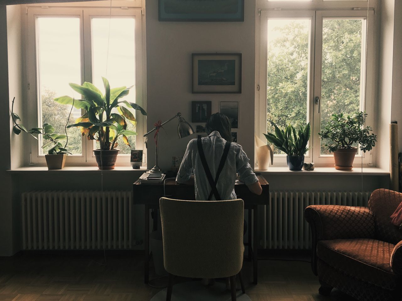 Window Plant Indoors  Home Interior One Person Radiator Day Nature People