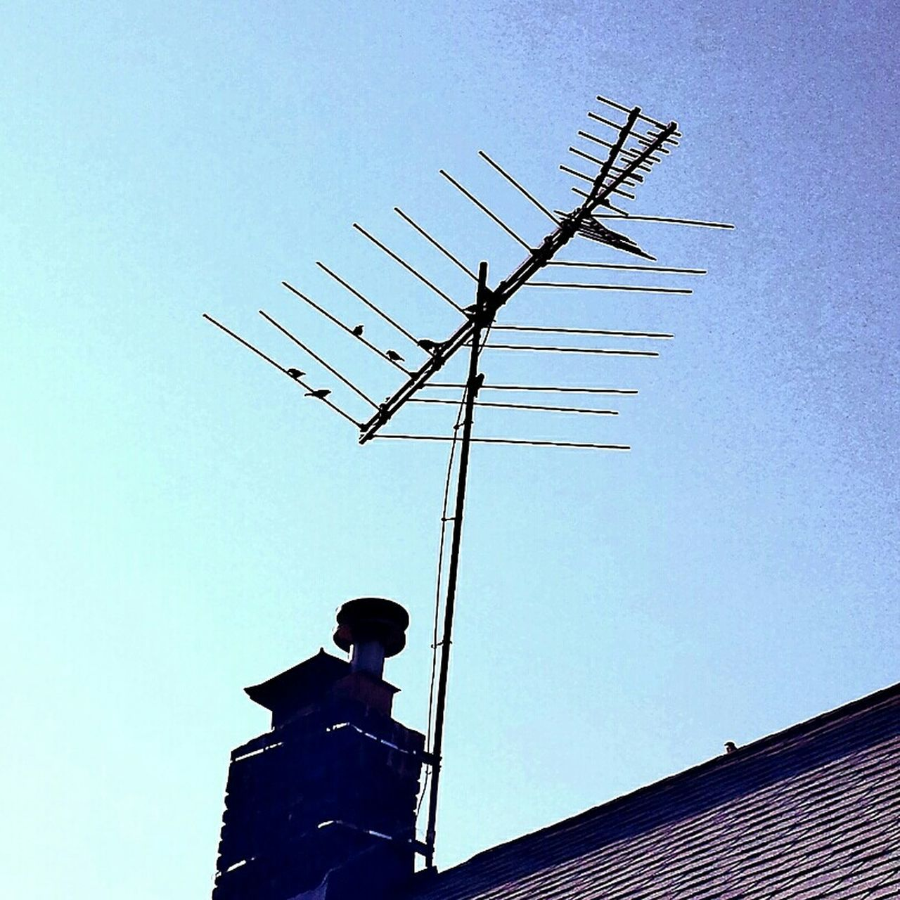 low angle view, clear sky, built structure, day, technology, building exterior, architecture, communication, roof, outdoors, antenna - aerial, no people, telecommunications equipment, television aerial, weather vane, sky, tiled roof