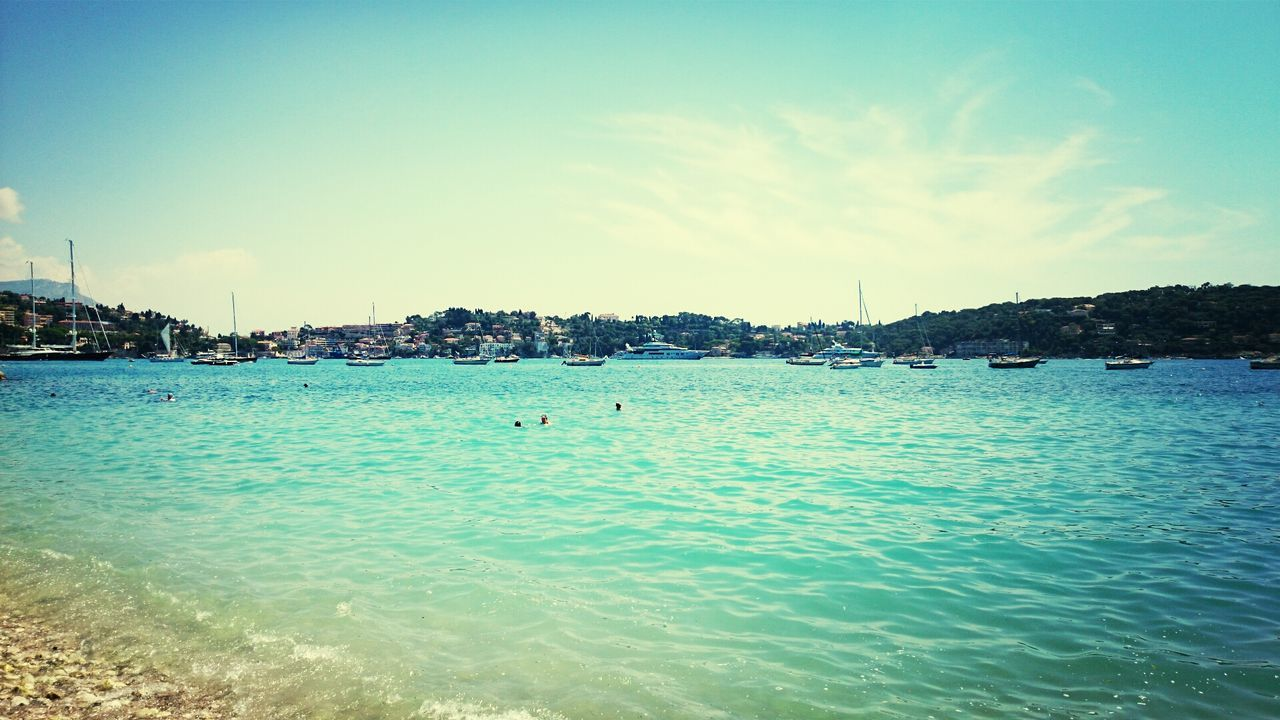 water, sea, beauty in nature, nature, scenics, blue, tranquility, tranquil scene, outdoors, sky, waterfront, no people, day, vacations, animals in the wild, swimming, nautical vessel, animal themes