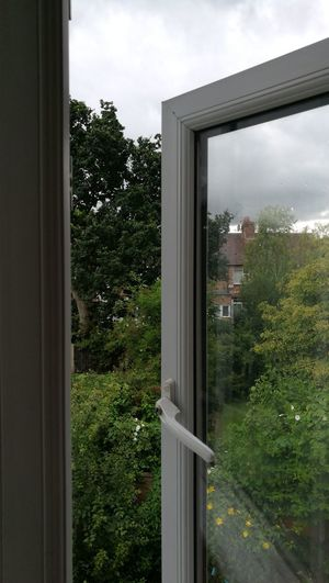 No Filter Out The Window  Pollyanna Garden Window Open Window Grey Day Manchester Suburbia Rarely Quiet
