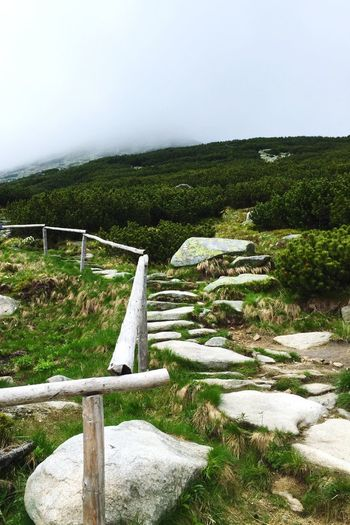 Colour Of Life Slovakia Hiking Hikingadventures Adventure Hightatras  Strbske Pleso Chata Cabin Cottage Clouds And Sky Foggy Pathway Path In Nature Followfriday