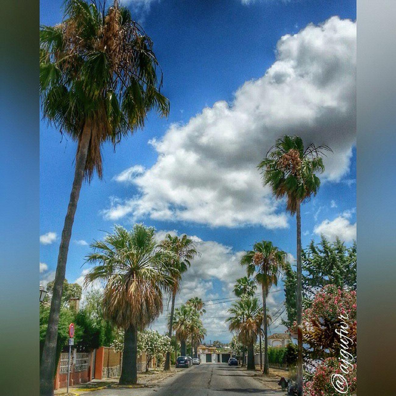 Instashot Instantes_fotograficos Sobrelamarcha Vallealto Elpuerto Elpuertodesantamaria Ok_streets Todoclick Cadizfornia Your_worldcaptures