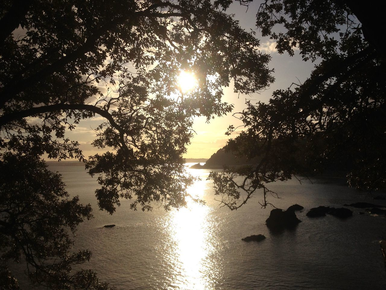 Through the trees Sea Seascape Seaside Blue Sky Sea View Torbay Water Reflections Evening Evening Sun England🇬🇧 Clouds Summer Views Sunset And Clouds  Landscapes Calm