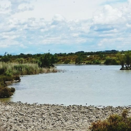 Rivière de Camargue First Eyeem Photo