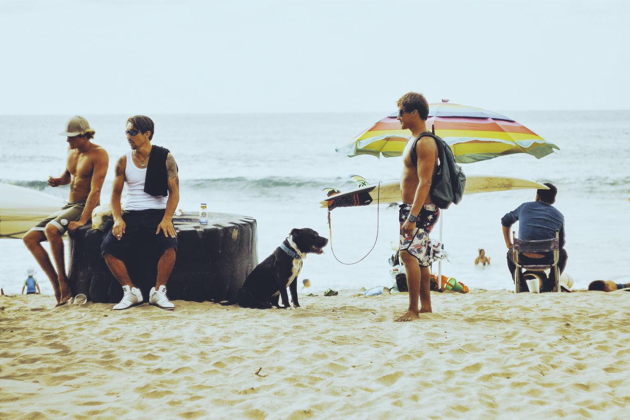 Adventure Club Beach Nature Sand Sayulita Eyeeemphoto Surf Surfing Sea Sky Dog Board Surfboard Waves Showcase July