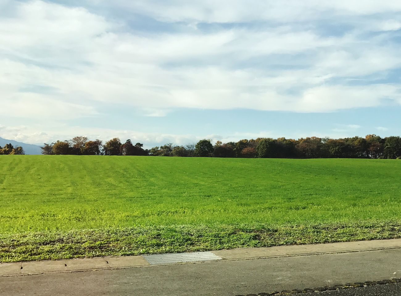 Animal husbandry field. Prairie Gunma Autumn