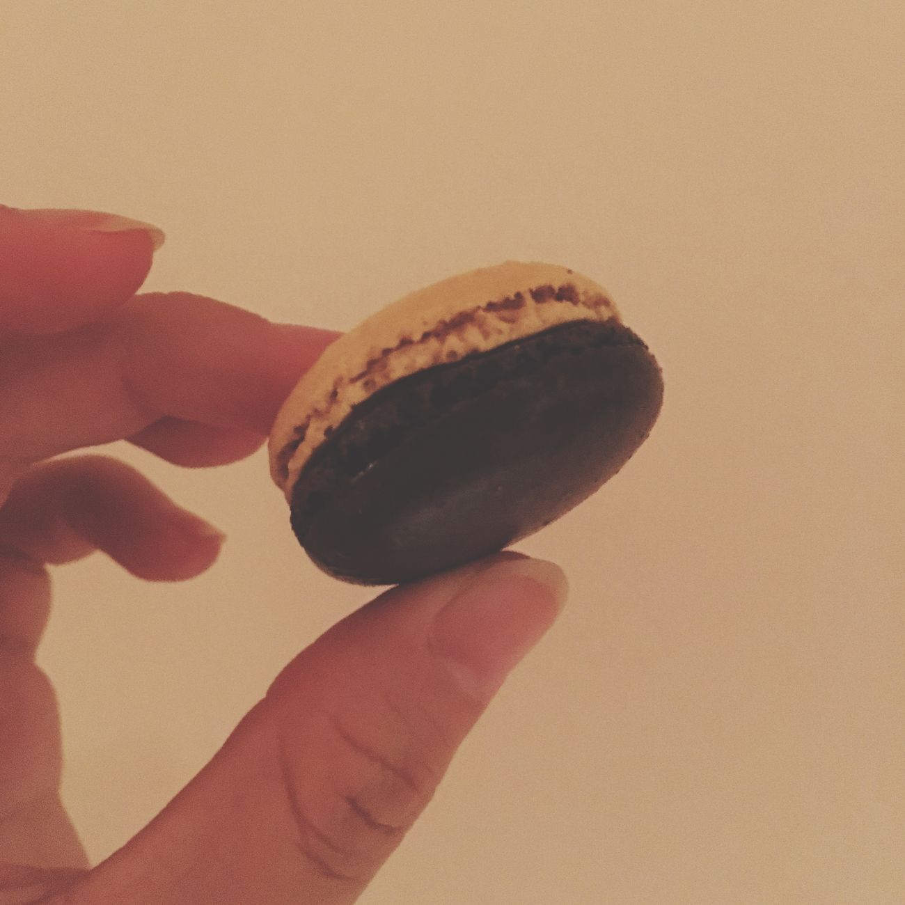 macaron○ Macaron Sweets Love Like Yummy Happy Marron 栗 日本 Japan