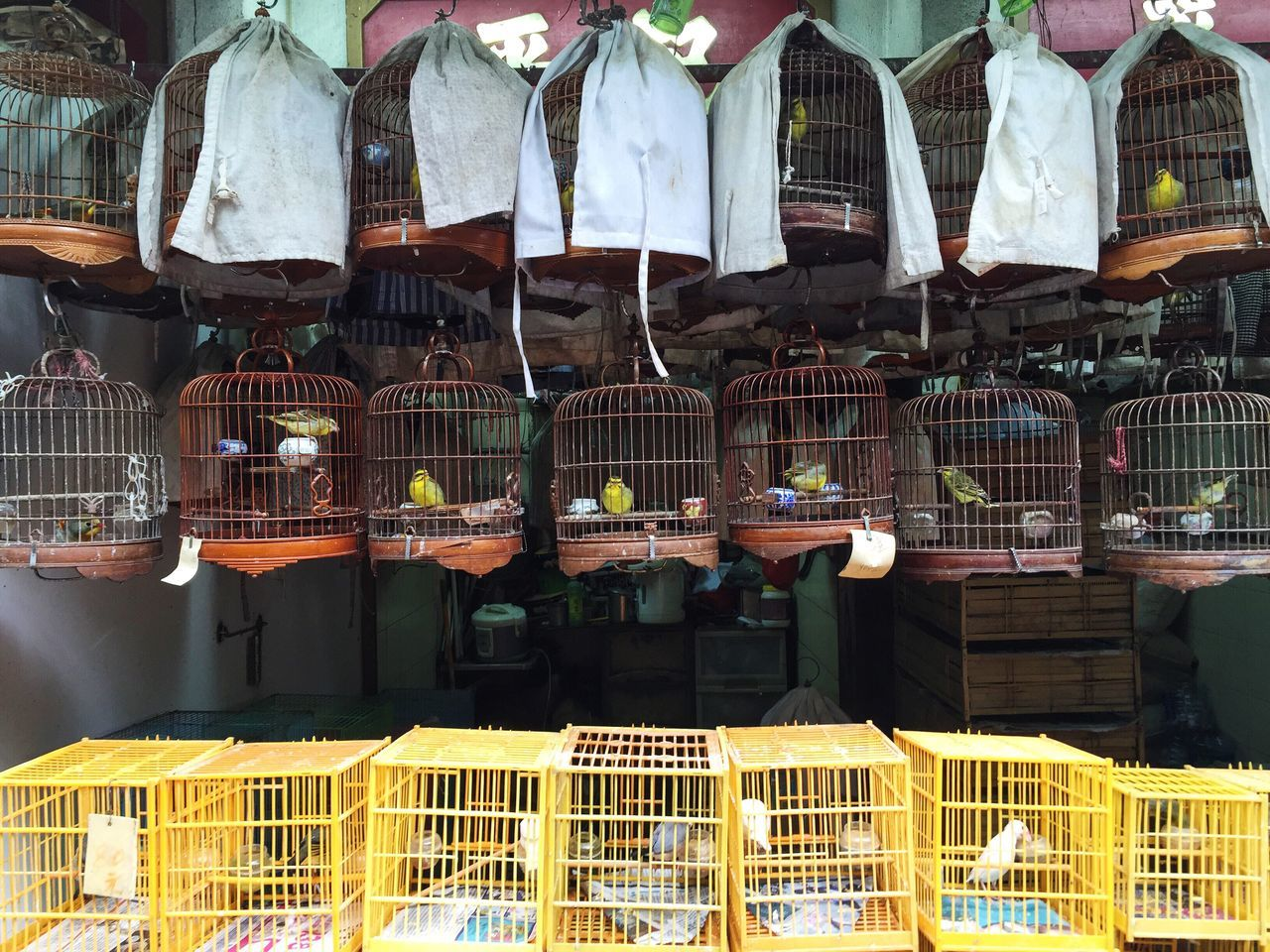 Theshoparoundthecorner HongKong Bird Market Birds Chinese Shop Photojournalism