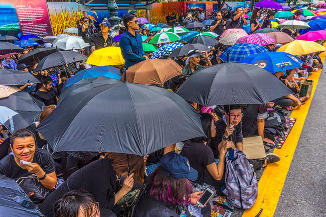 Crowds with to sing the Royal Anthem in honour of HM King Bhumibol Adulyadej. Adult Bangkok Crowd Day Horizontal King Bhumipol Adulyadet Large Group Of People Outdoors People Person Thailand Umbrella Umbrellas