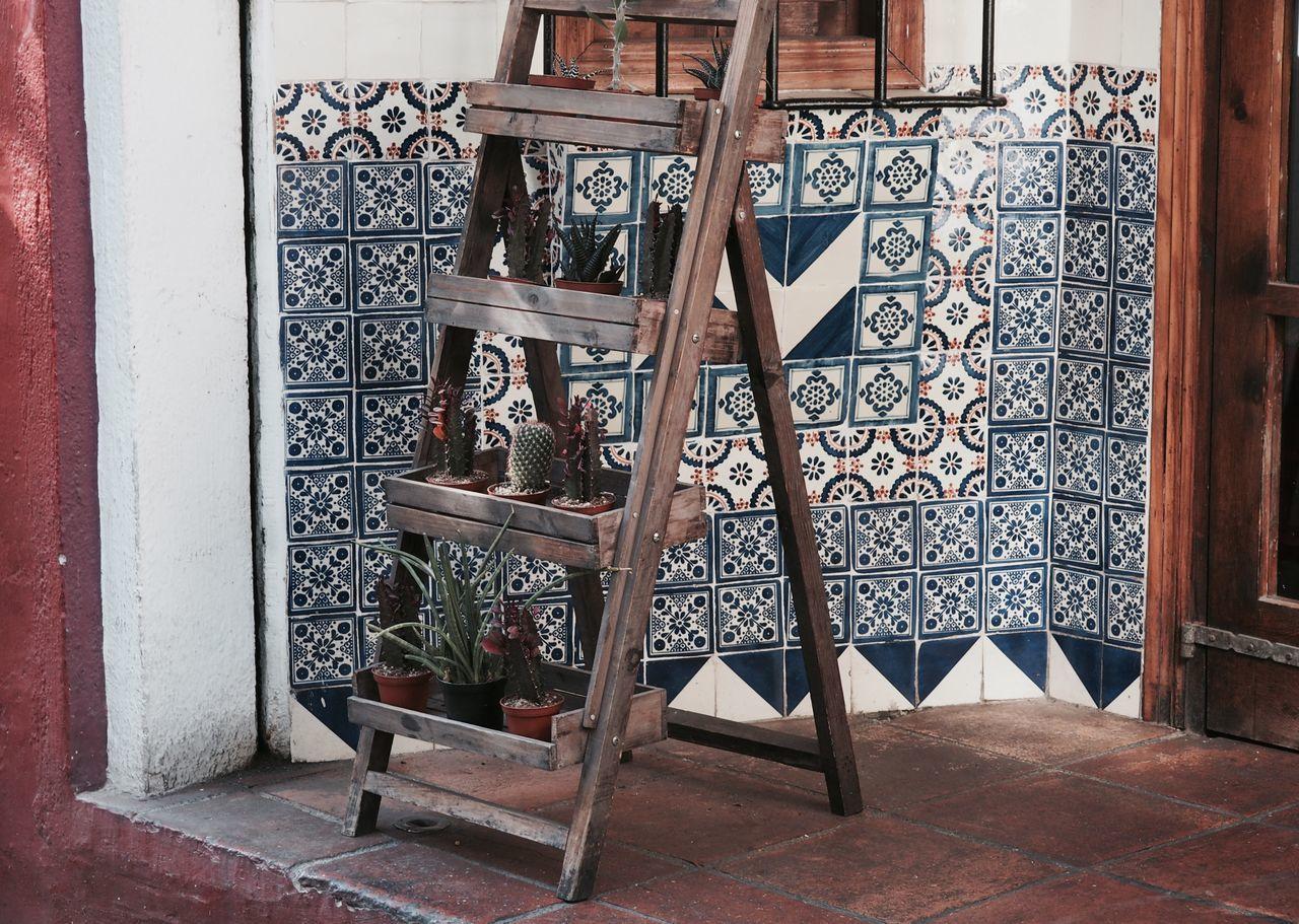 Architecture Built Structure Cactus Day Door Flowers For Sale Indoors  No People Open Door Plants Symmetry