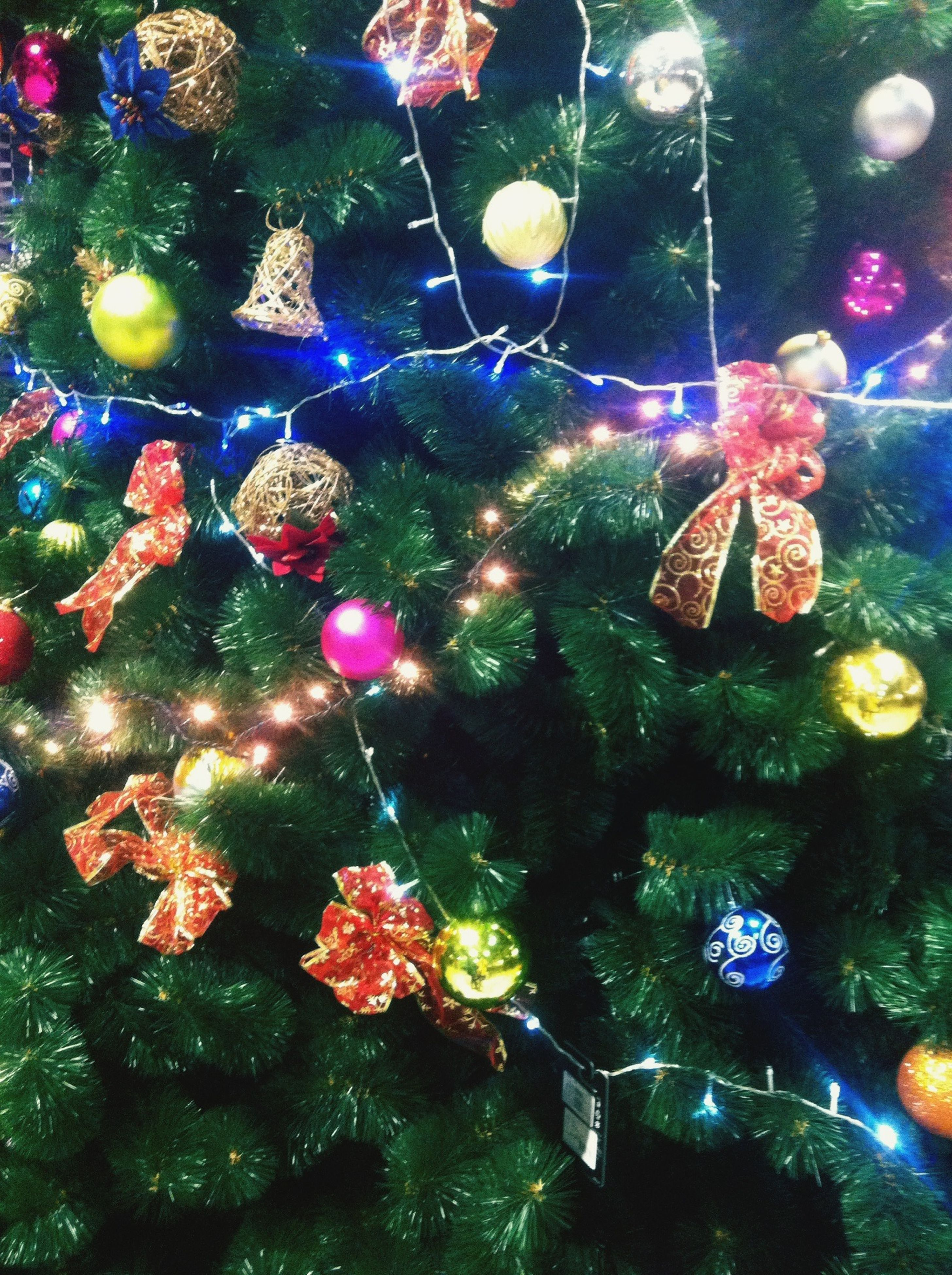 water, reflection, multi colored, decoration, celebration, christmas decoration, nature, christmas tree, no people, close-up, hanging, underwater, indoors, beauty in nature, christmas ornament, pink color, christmas, pond, transparent