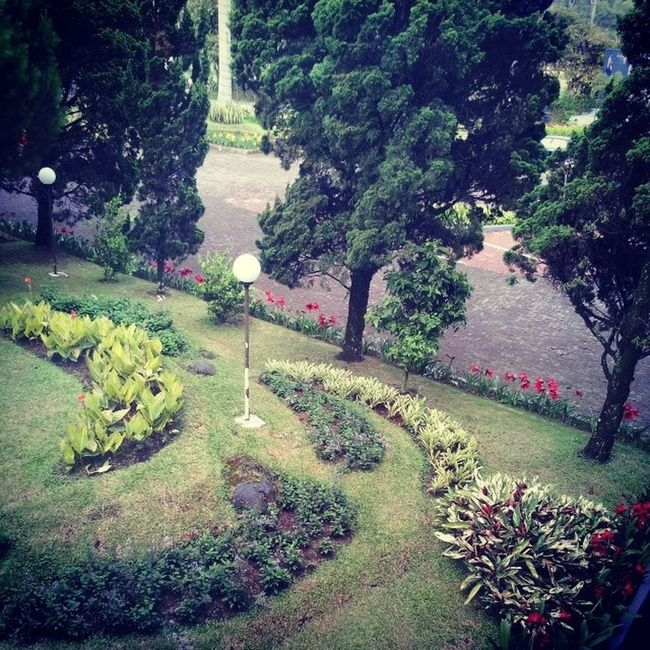 Roadside Garden Hotel Lembang Garden