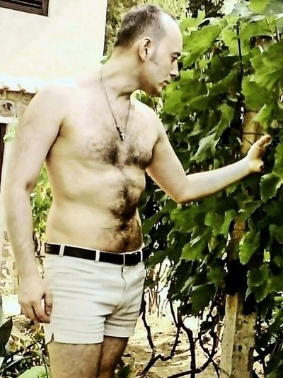 Man in vineyard One Person Outdoors One Man Only Only Men Man Vineyard Vines And Leaf Vines Hung With Grapes Grapes Grapes, Vineyard, Wine, Winery, Soft, Me,Myself,and I