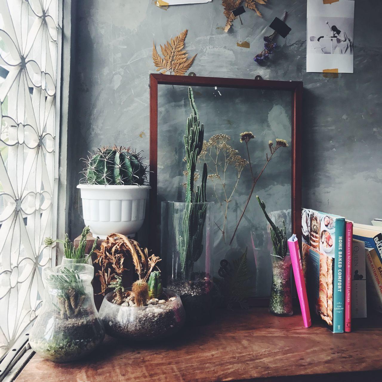Decoration Interior Design Cafe Plant Artistic Johor Bahru