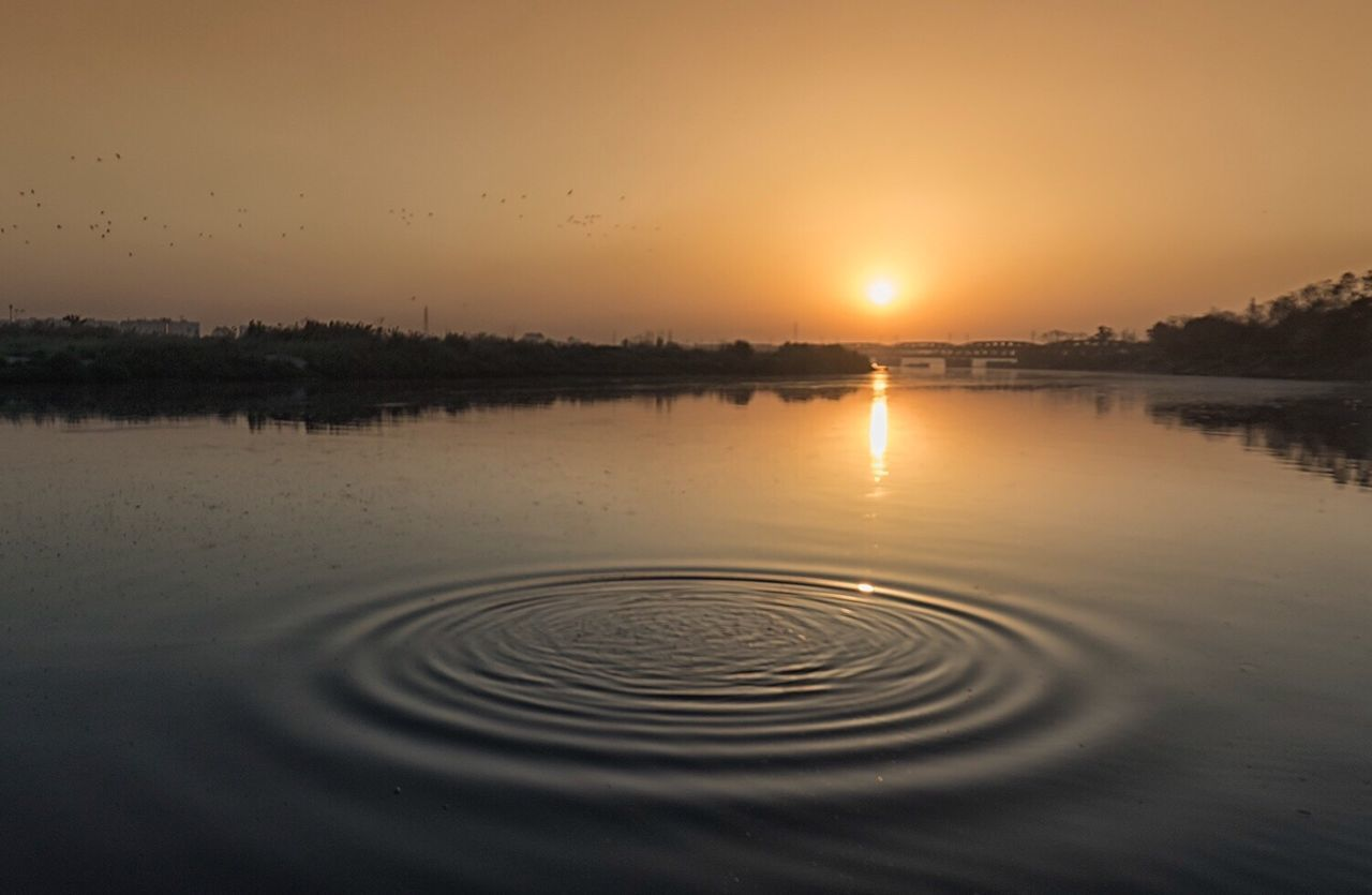 Desires are like ripples You chase first Second occurred Life goes on... Sunrise Sunrise_Collection Sun Golden Hour Water Tranquil Scene Ripples Beauty In Nature Tranquility Nature Wanderlust EyeEmBestPics Nature Photography EyeEm Masterclass Livestock Incredible India Getty Images EyeEm Best Shots EyeEm Nature Lover EyeEm Best Shots - Nature Travel Photography Beauty In Nature EyeEm Gallery EyeEm Best Shots - Landscape Landscape