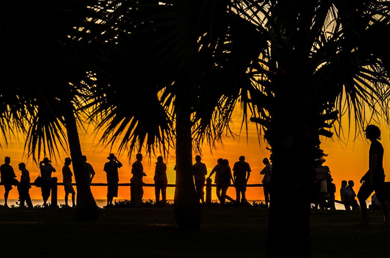 Australia Beach Beauty In Nature Day Full Length Growth Large Group Of People Nature Outdoors Palm Tree People Real People Scenics Silhouette Silhouette Sky Sunset The Great Outdoors - 2017 EyeEm Awards Tree Tree Trunk Watching The Sunset Western Australia Neighborhood Map in Broome, Australia