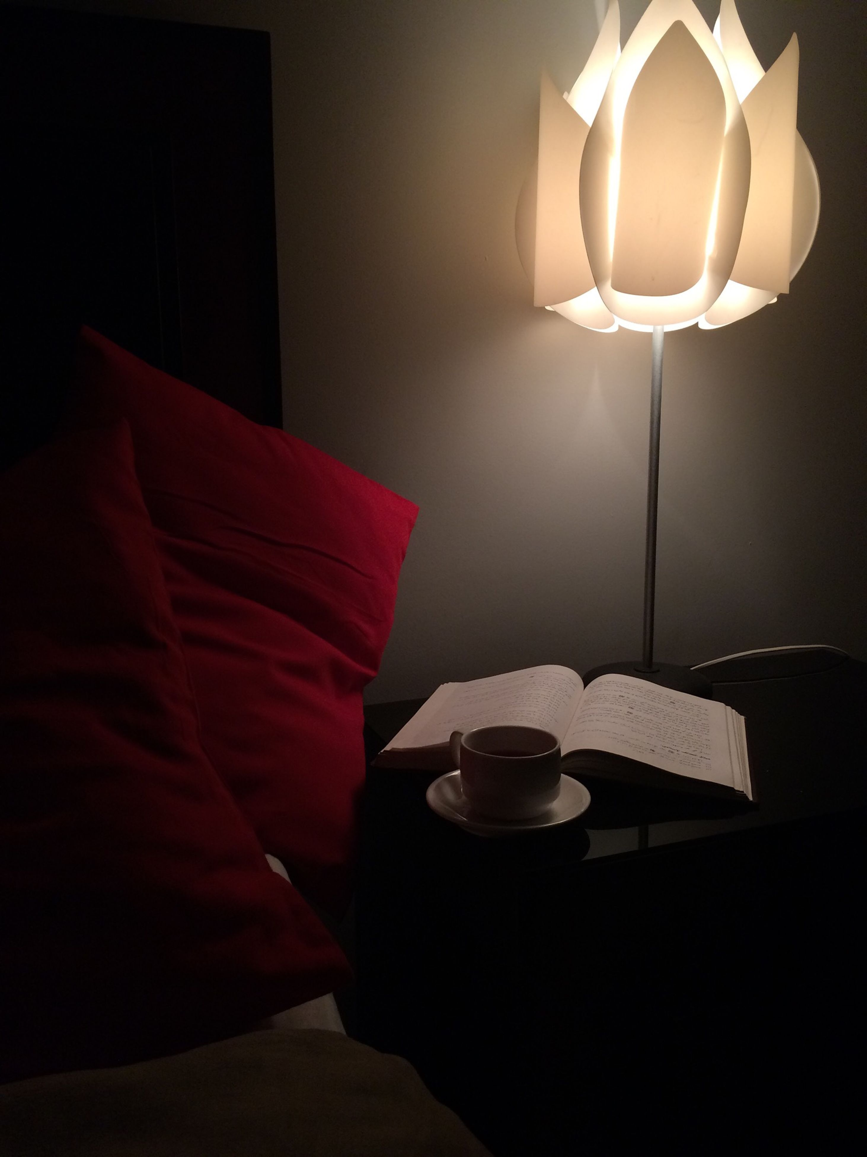 indoors, illuminated, home interior, table, lighting equipment, chair, electric lamp, absence, room, empty, domestic room, dark, lamp, darkroom, home showcase interior, lit, furniture, wall - building feature, still life, electric light